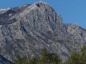 Monte Fammera